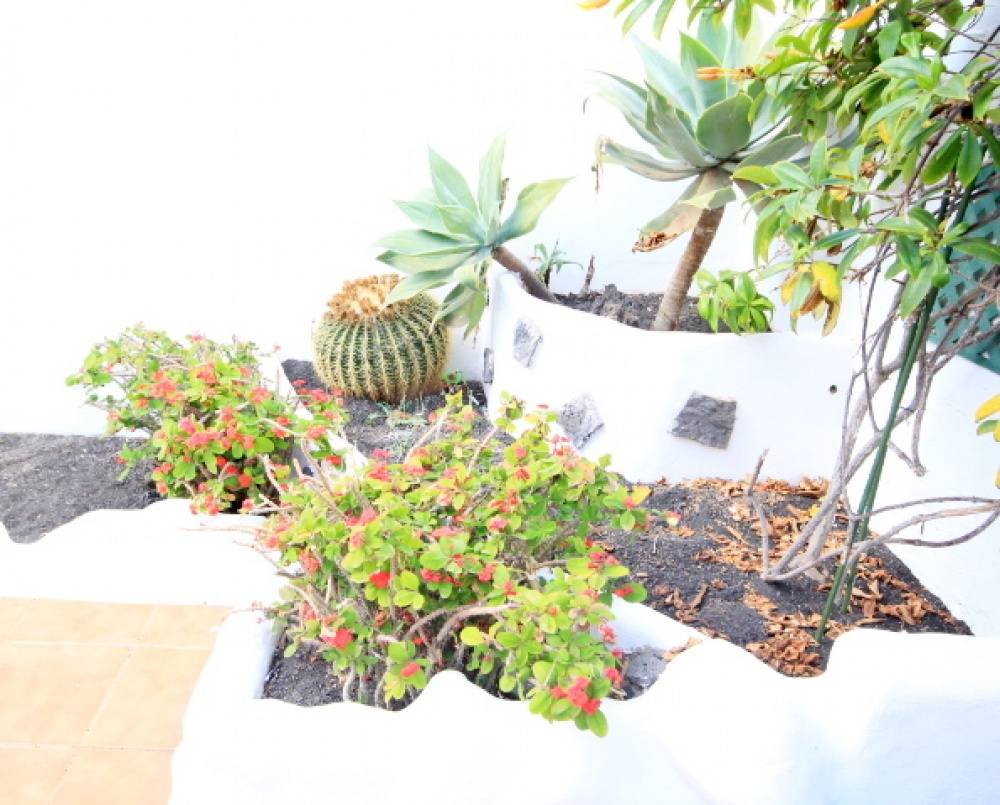 3 bedroom duplex for sale in Costa Teguise - Costa Teguise - lanzaroteproperty.com