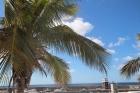 Frontline 1 bedroom apartment for sale in Puerto Calero - Puerto Calero - Property Picture 1